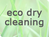 ECO Dry Cleaning OZO2USA
